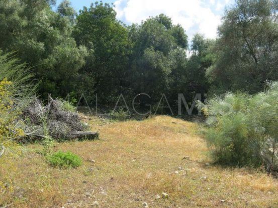 Plot for sale in Casares Montaña | BM Property Consultants