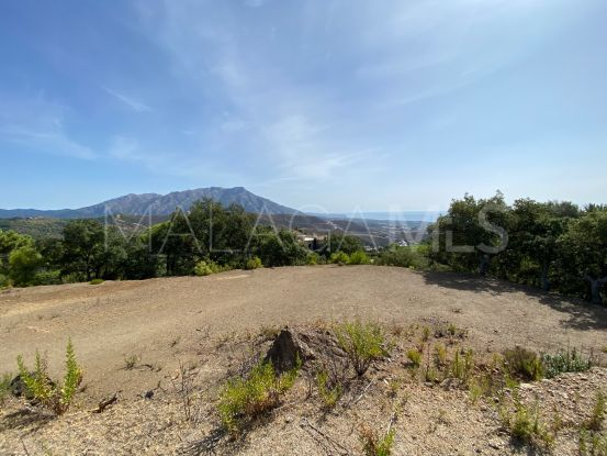 La Zagaleta plot for sale | Arias-Camisón Properties