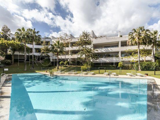 Polo Gardens 4 bedrooms apartment for sale | Consuelo Silva Real Estate