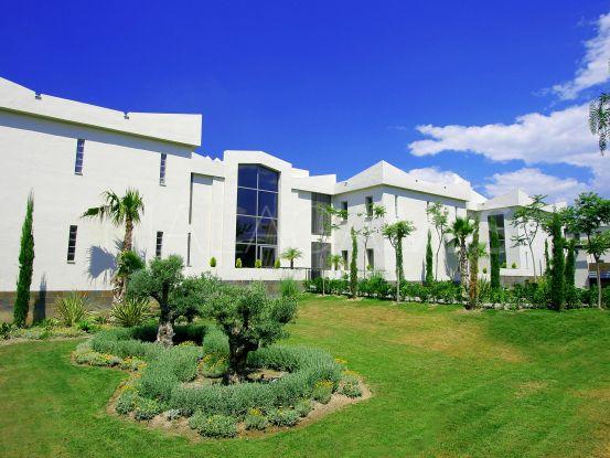 Apartment in Acosta los Flamingos for sale   Inmobiliaria Luz