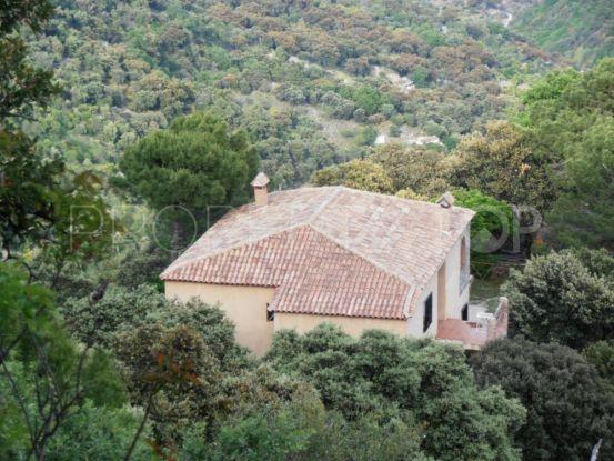 Finca for sale in Algatocin with 3 bedrooms | Immobilien Lückmann