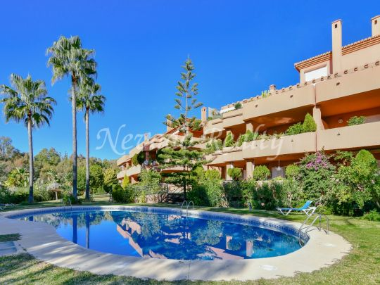A spacious apartment very close to the Puente Romano Hotel and the beach