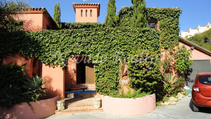 Special villa in Elviria