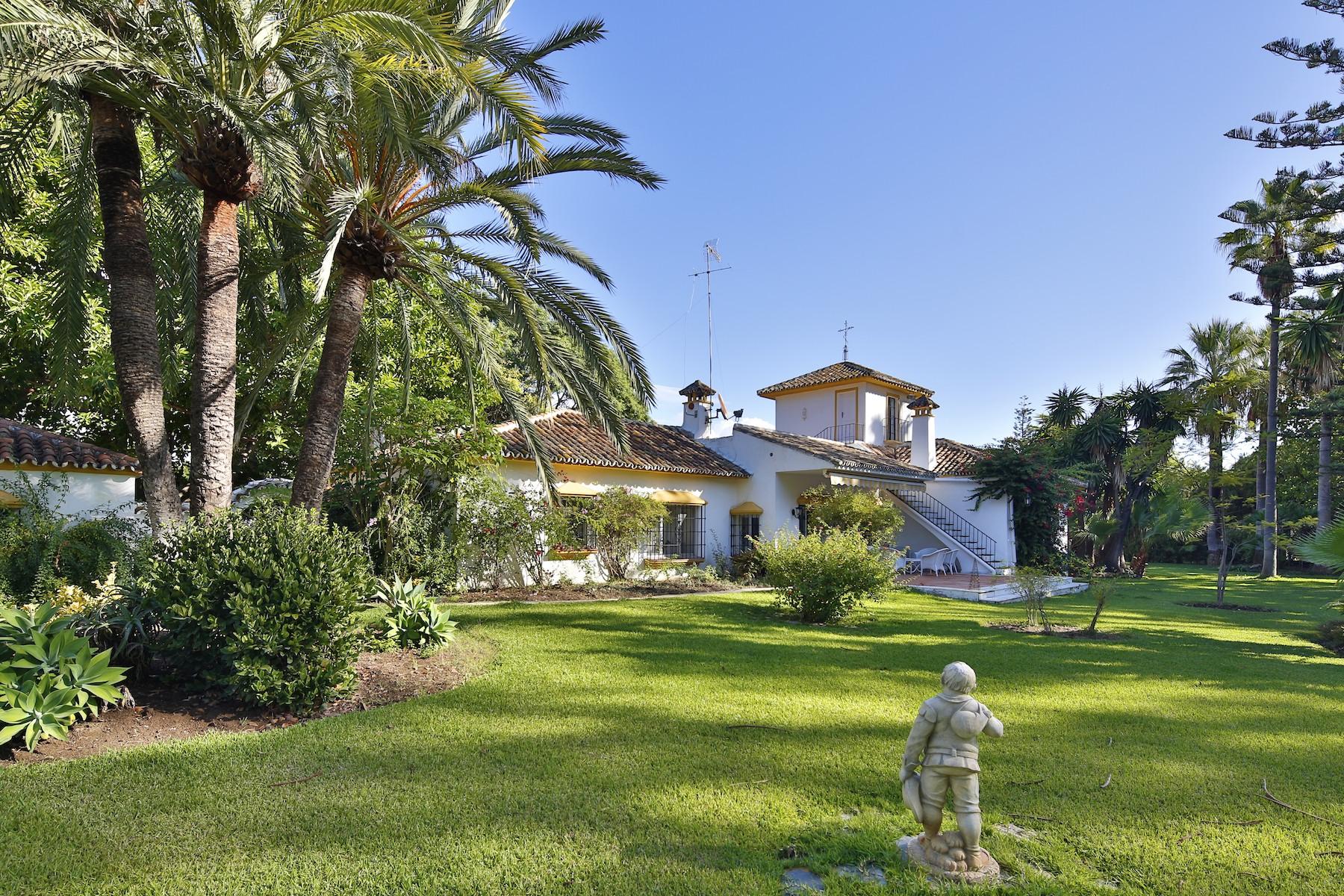 Villa for Sale and Rent in Guadalmina Baja, San Pedro de Alcantara