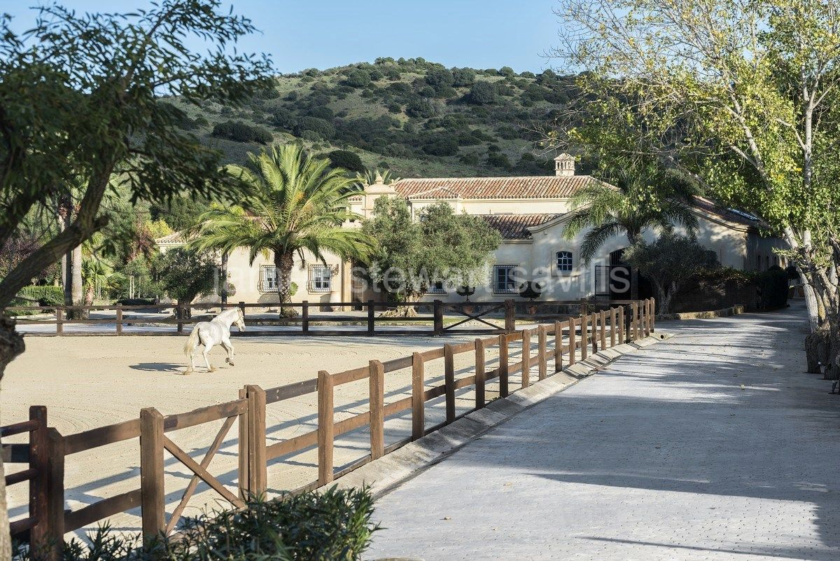 Wonderful nearly 42 acre Andalucian Finca next to Sotogrande