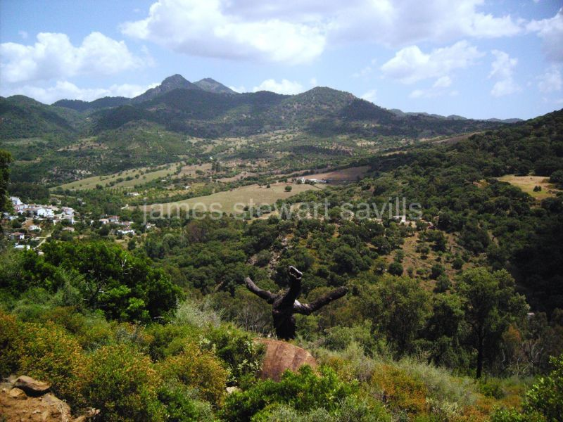 Plot for sale in Gaucin