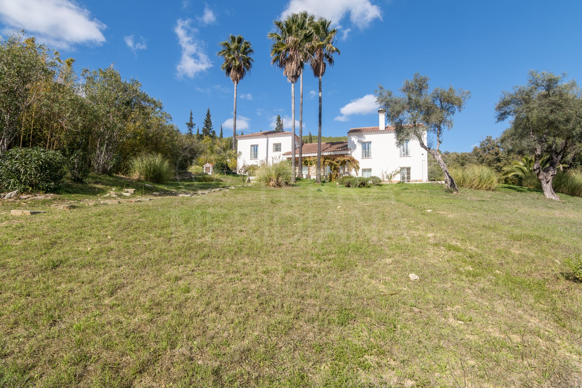 Unique Opportunity to purchase a charming villa set within 3 acres of private mature gardens in Gaucin, Andalucia