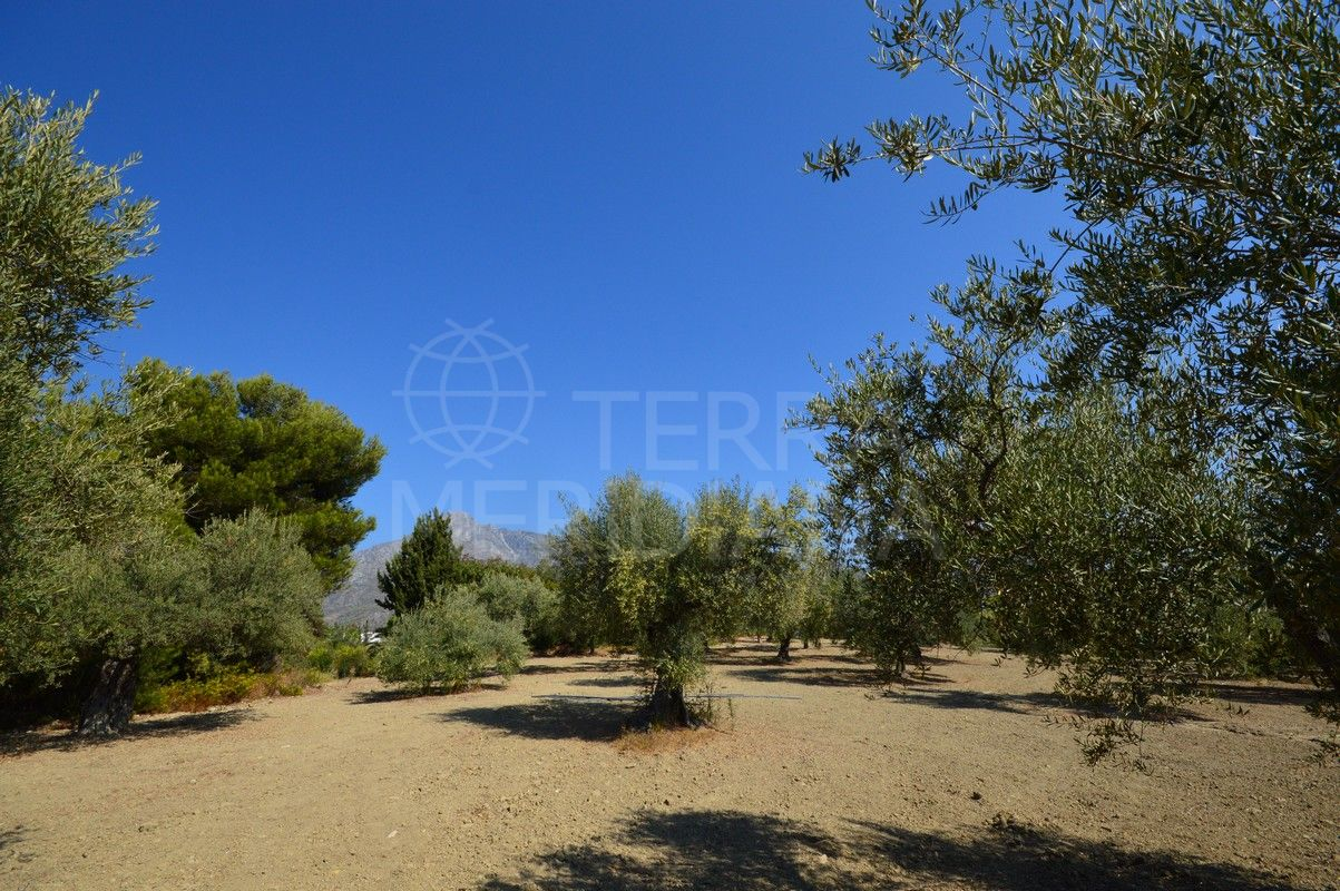 One-of-a-kind plot with mountain views for sale in Altos de Puente Romano, Marbella Golden Mile