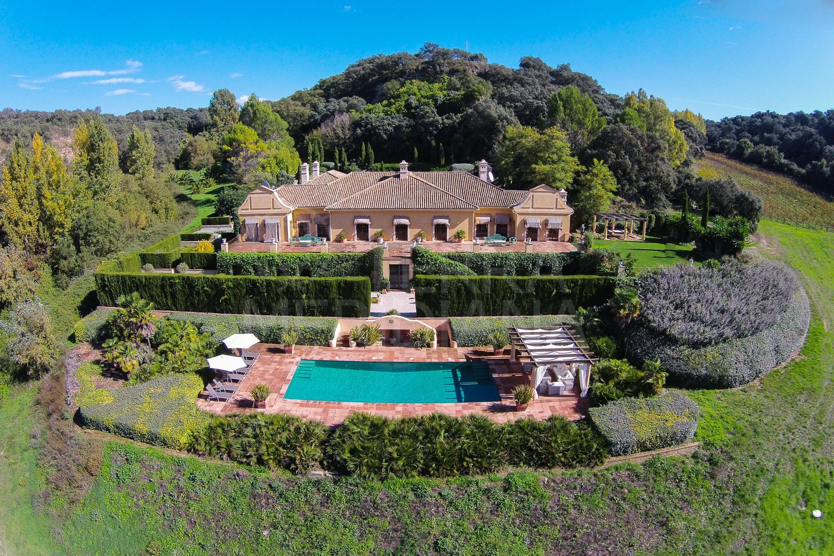 Spectacular country estate with vineyard in Ronda, Malaga