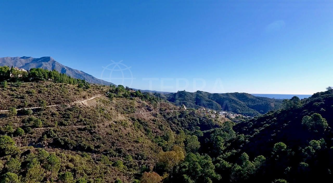 Opportunity to acquire a large double plot in the gated community of El Madroñal, in Benahavis