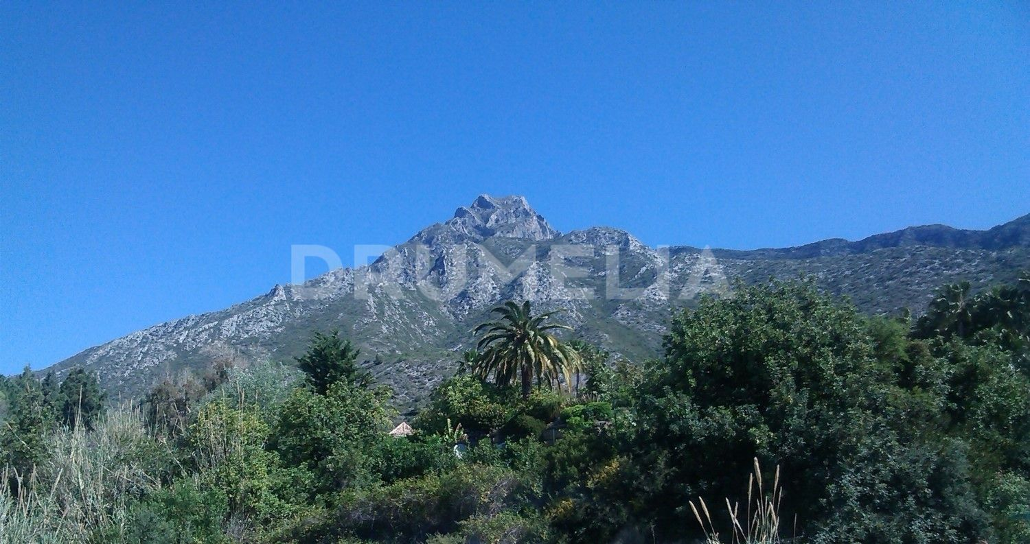 Marbella Golden Mile, Exceptional Plot with Project and Sea Views in Los Picos, Golden Mile Marbella