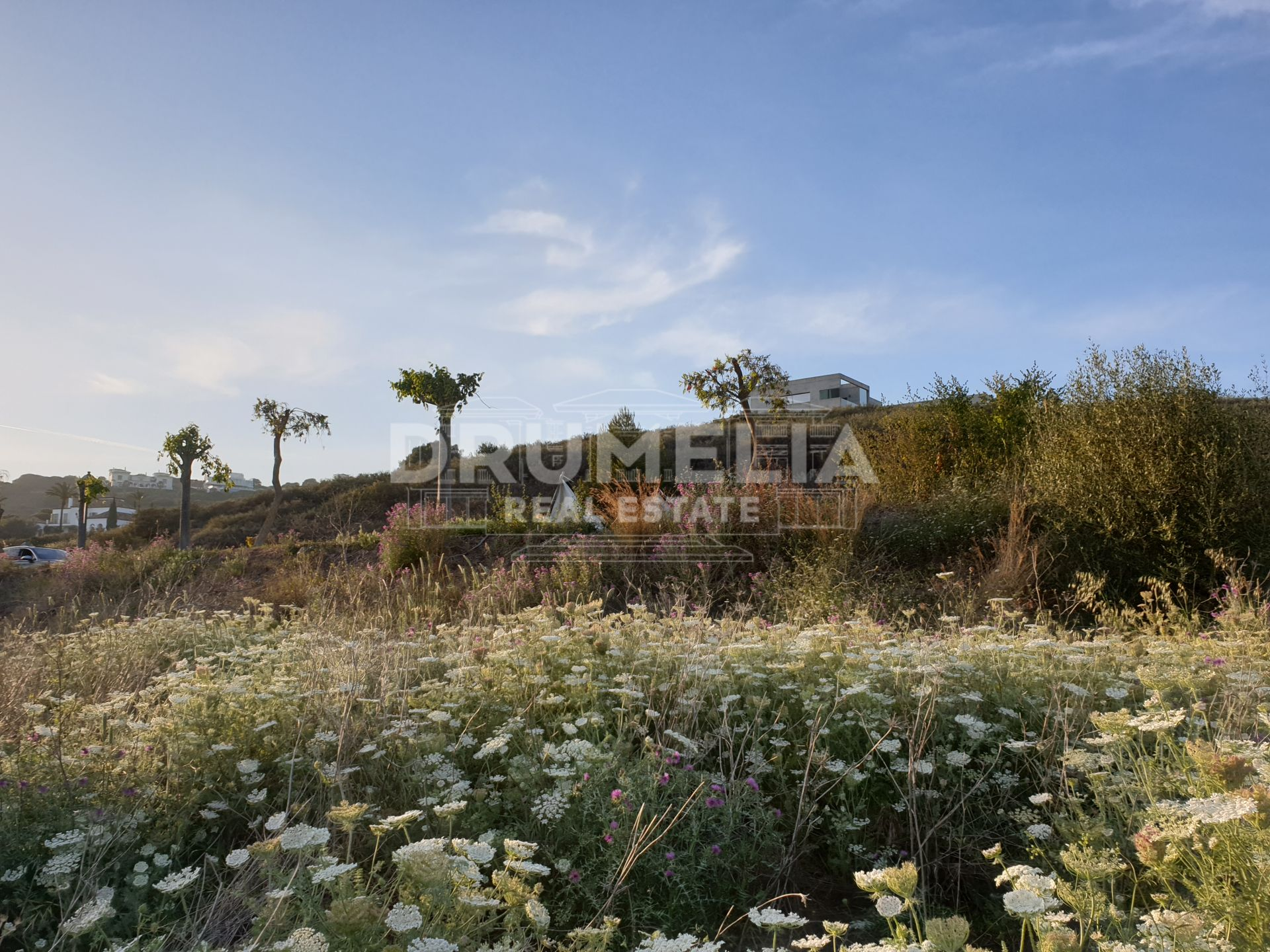 Sotogrande, Excellent Plot with Panoramic Views in La Reserva, Sotogrande