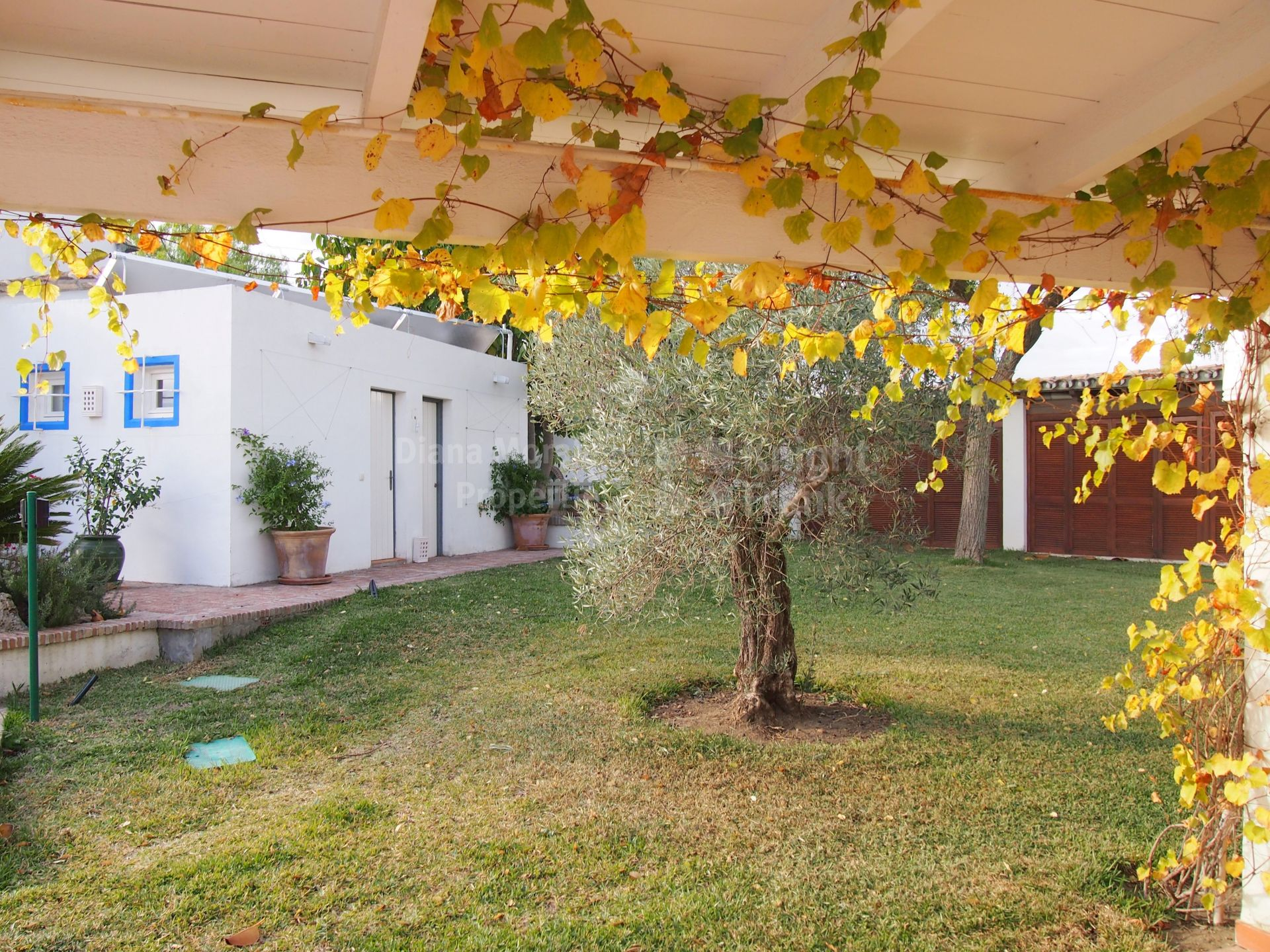 Villa vendre cancelada estepona for O jardin ideal route de montauban bessieres