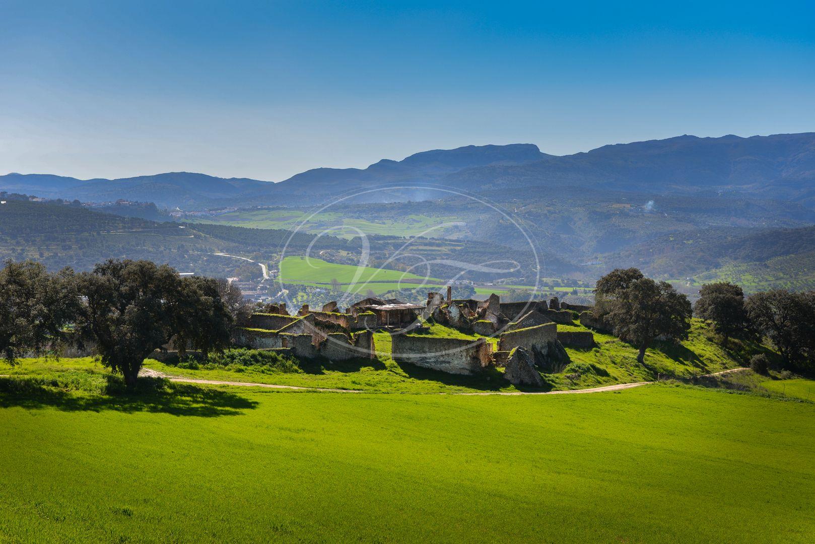 Boerderij te koop in Ronda