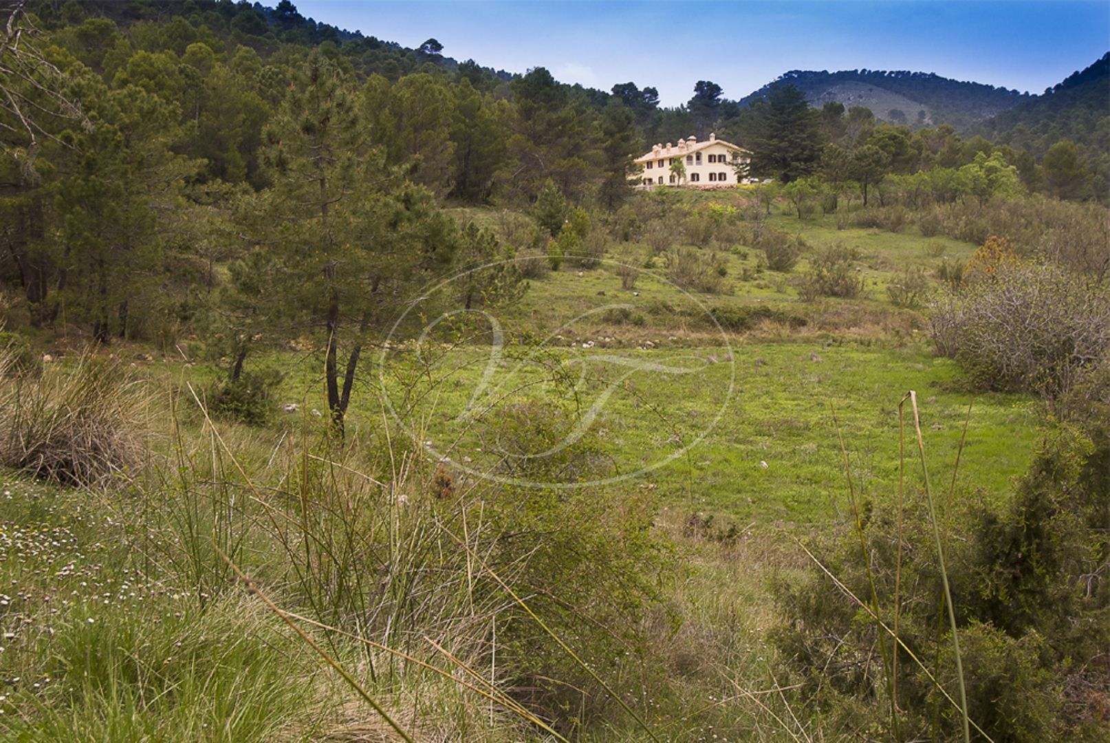 Estate for sale in Jaen