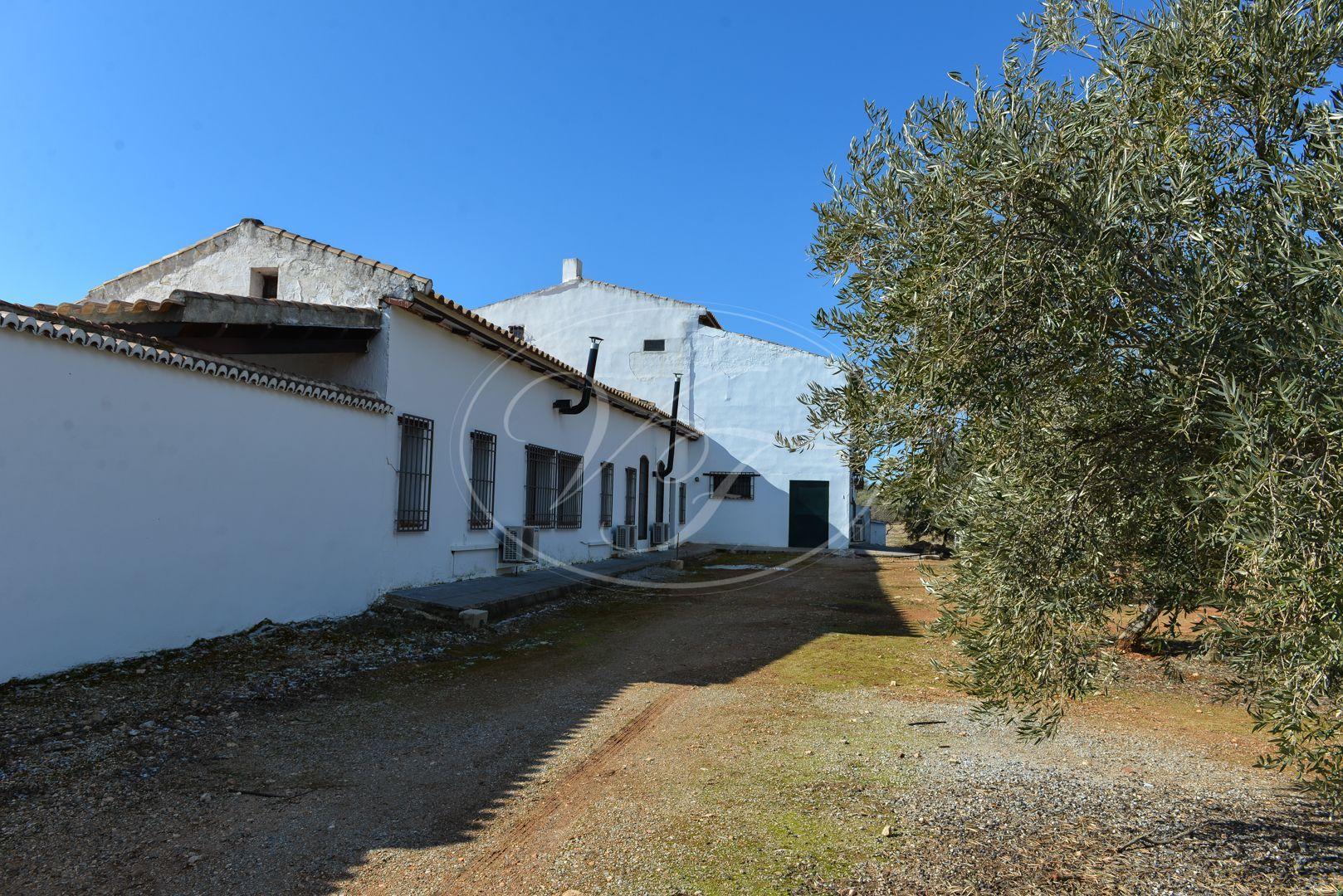 Cortijo for sale in Granada
