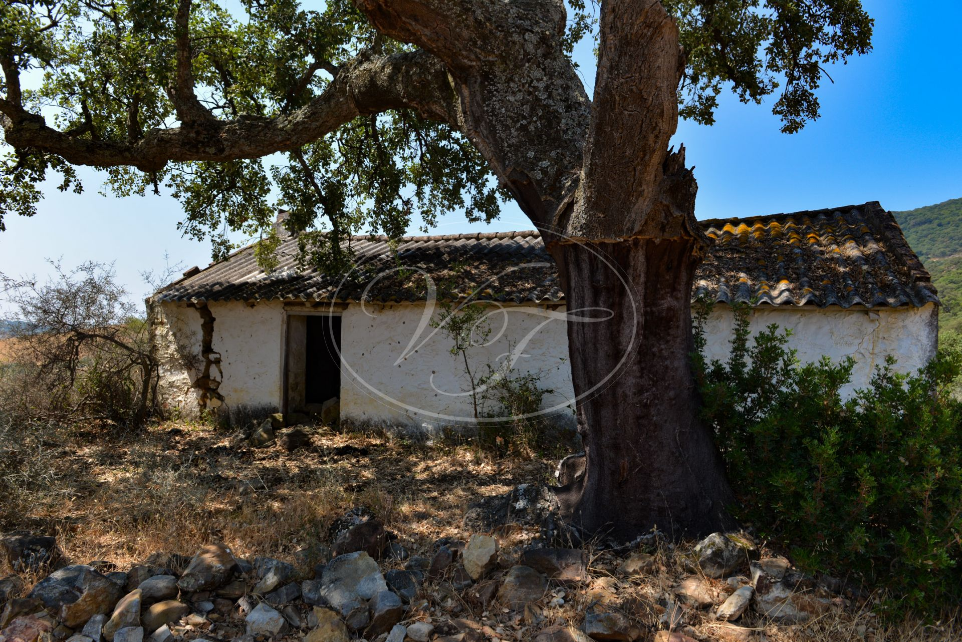 Estate for sale in Sotogrande