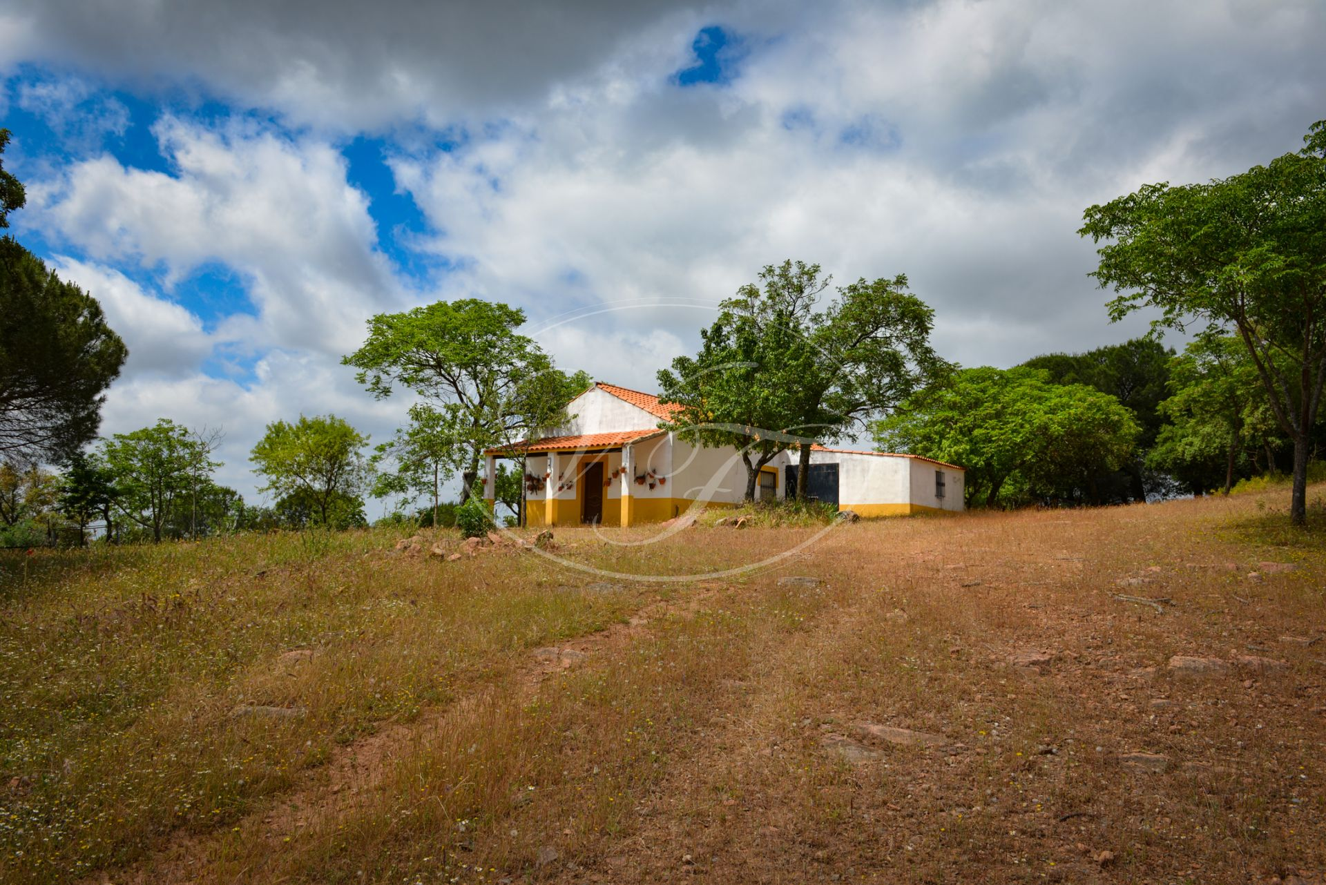 Hacienda en venta en Cordoba