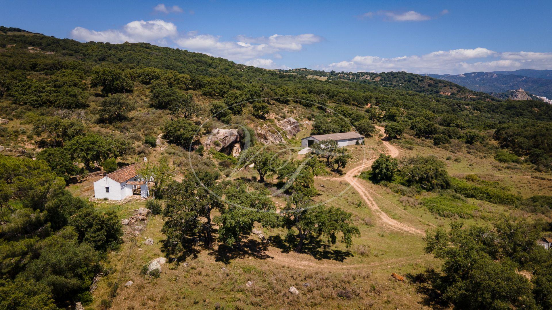 Landgoed te koop in Jimena de La Frontera