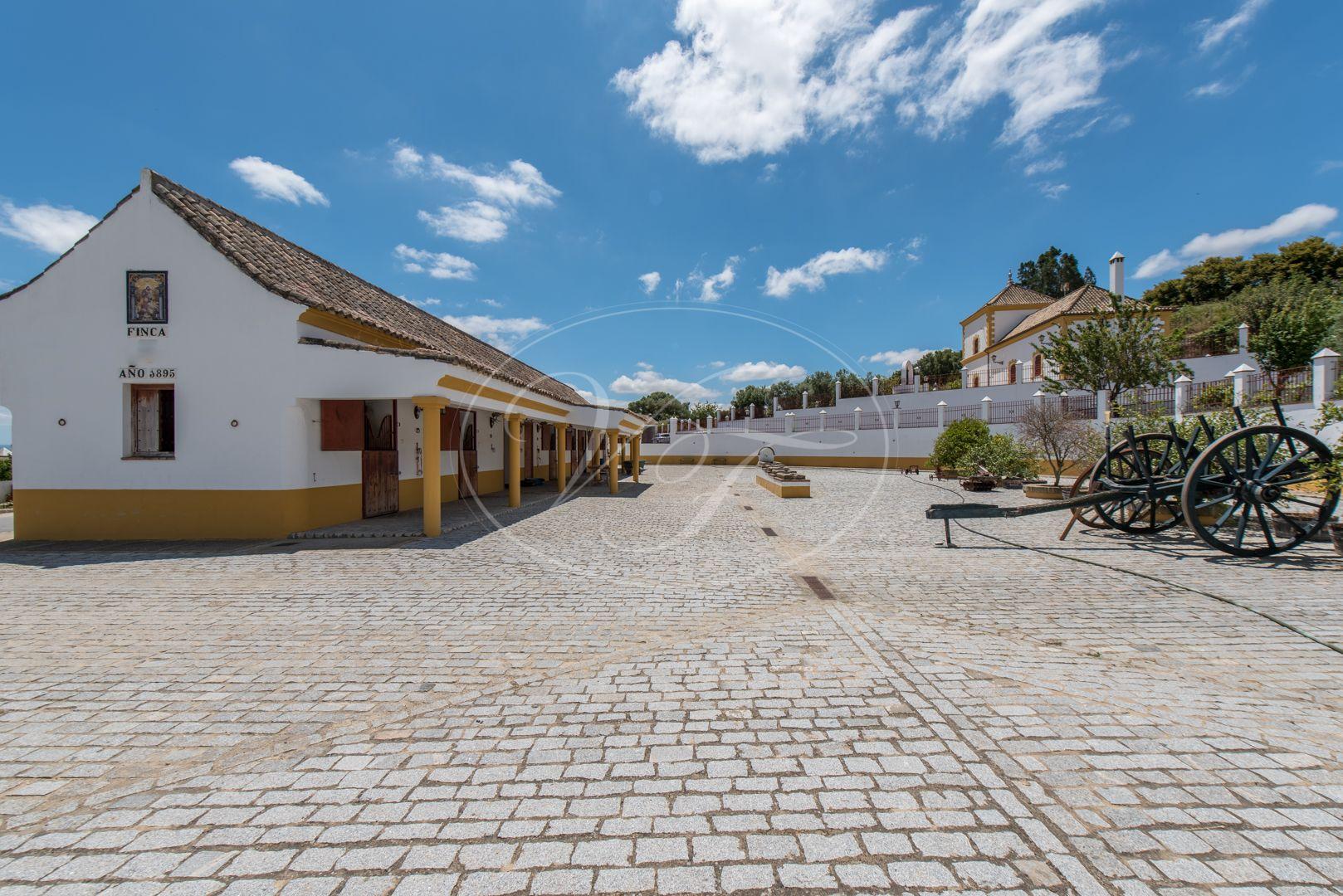 Boerderij te koop in Medina-Sidonia