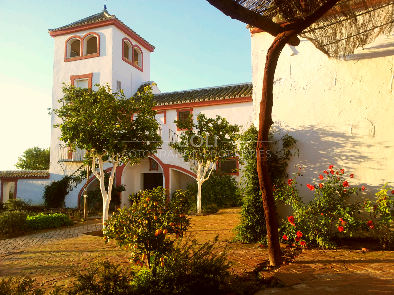 Charming property, the spirit of Andalusia. Carmona Sevilla.