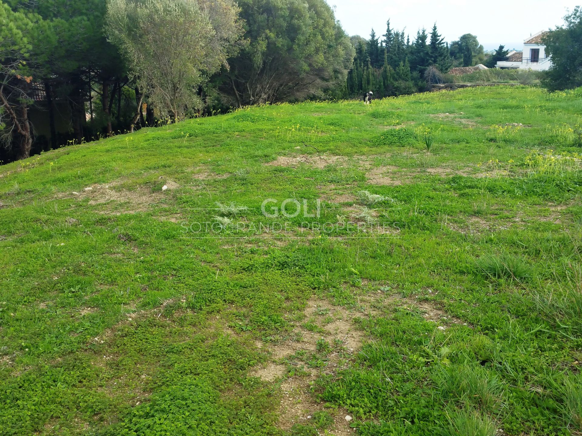 Plot for sale on prestigious La Reserva area