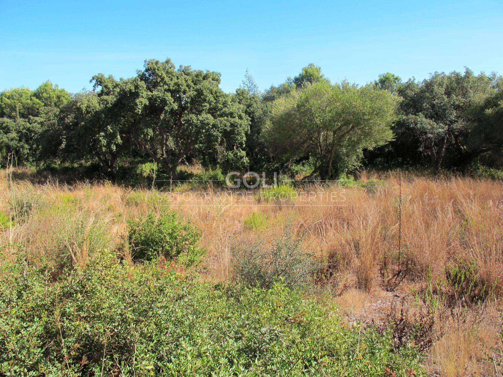 Plots for sale in Los Altos de Valderrama