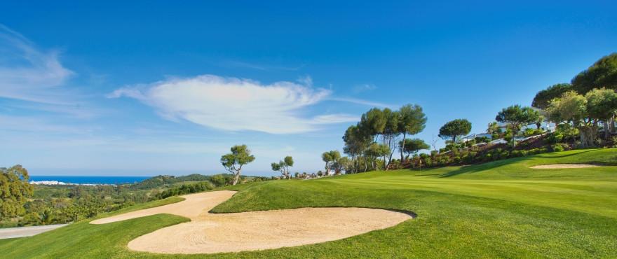 Green Golf – NEWTH6491