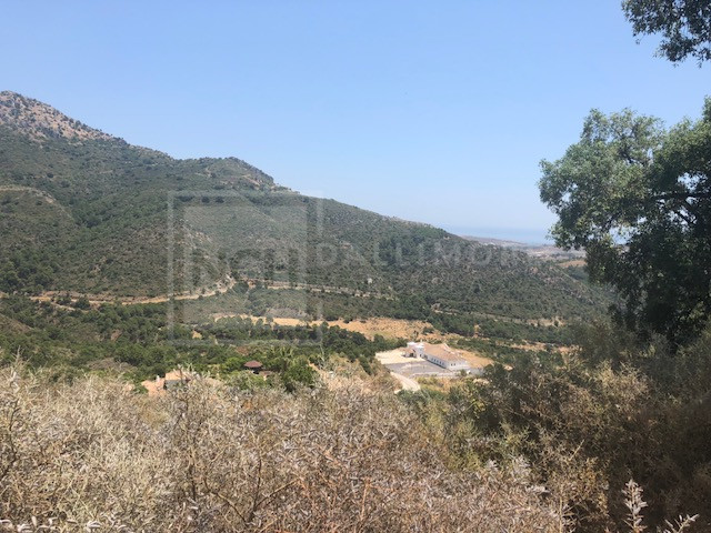 Plot Monte Mayor, Benahavis – NCHPL6225