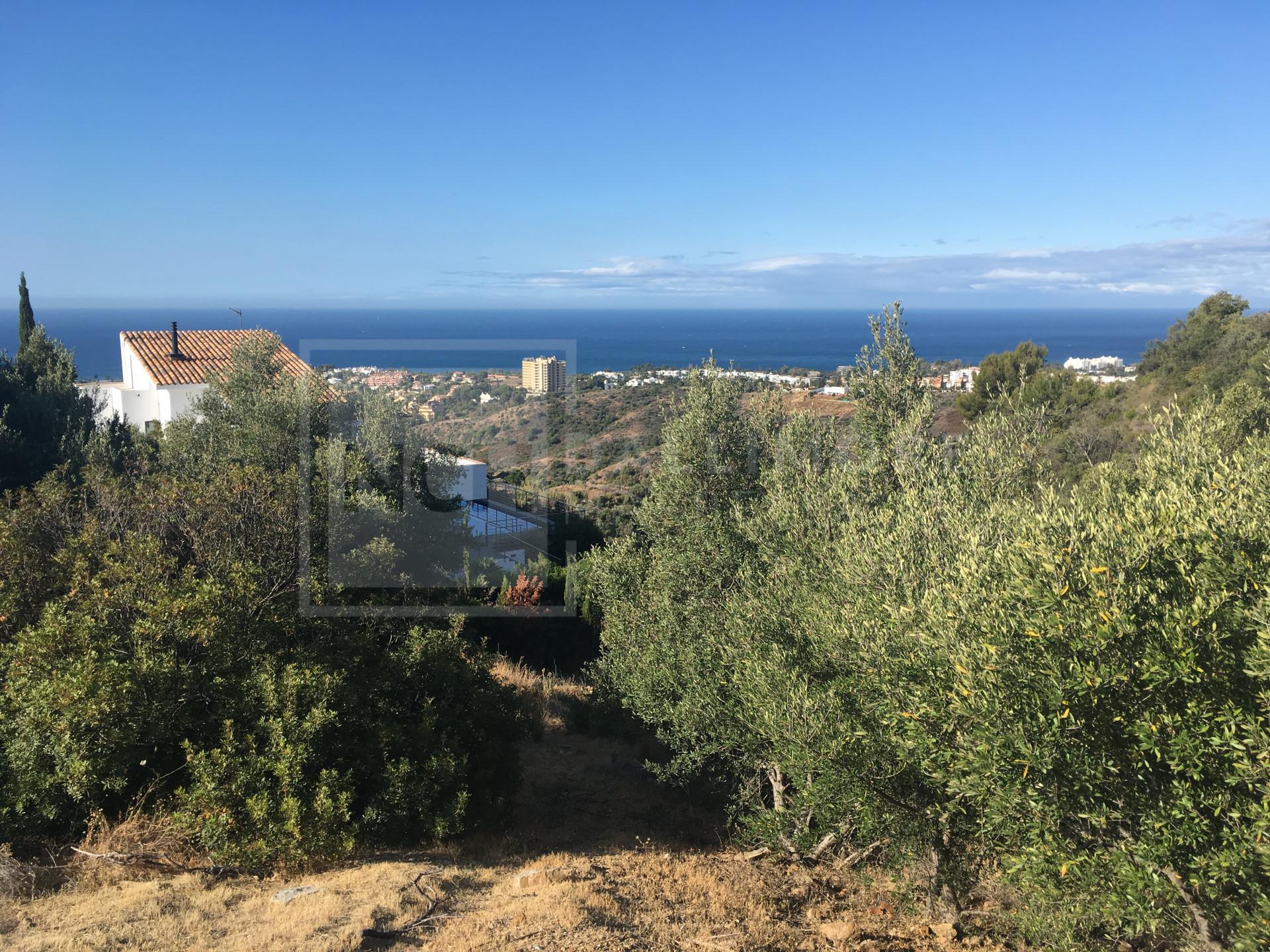 Plot Los Altos de los Monteros, Marbella East - NEWPL6465