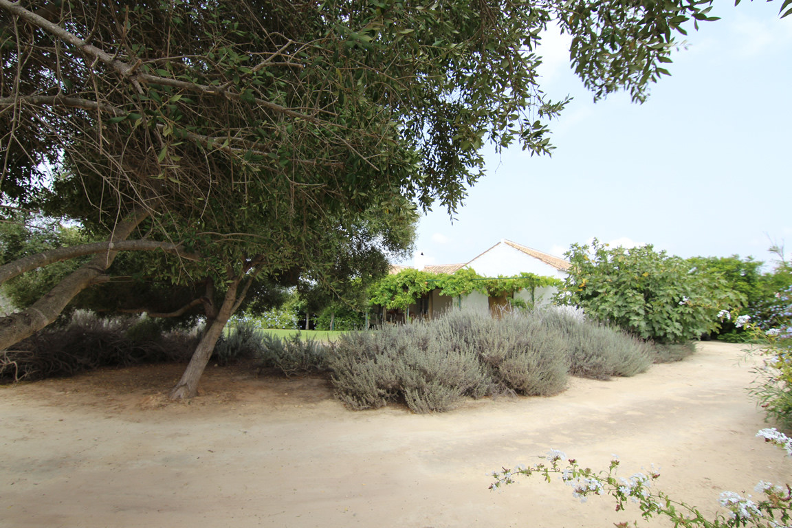 Country House for sale in Torreguadiaro, Sotogrande