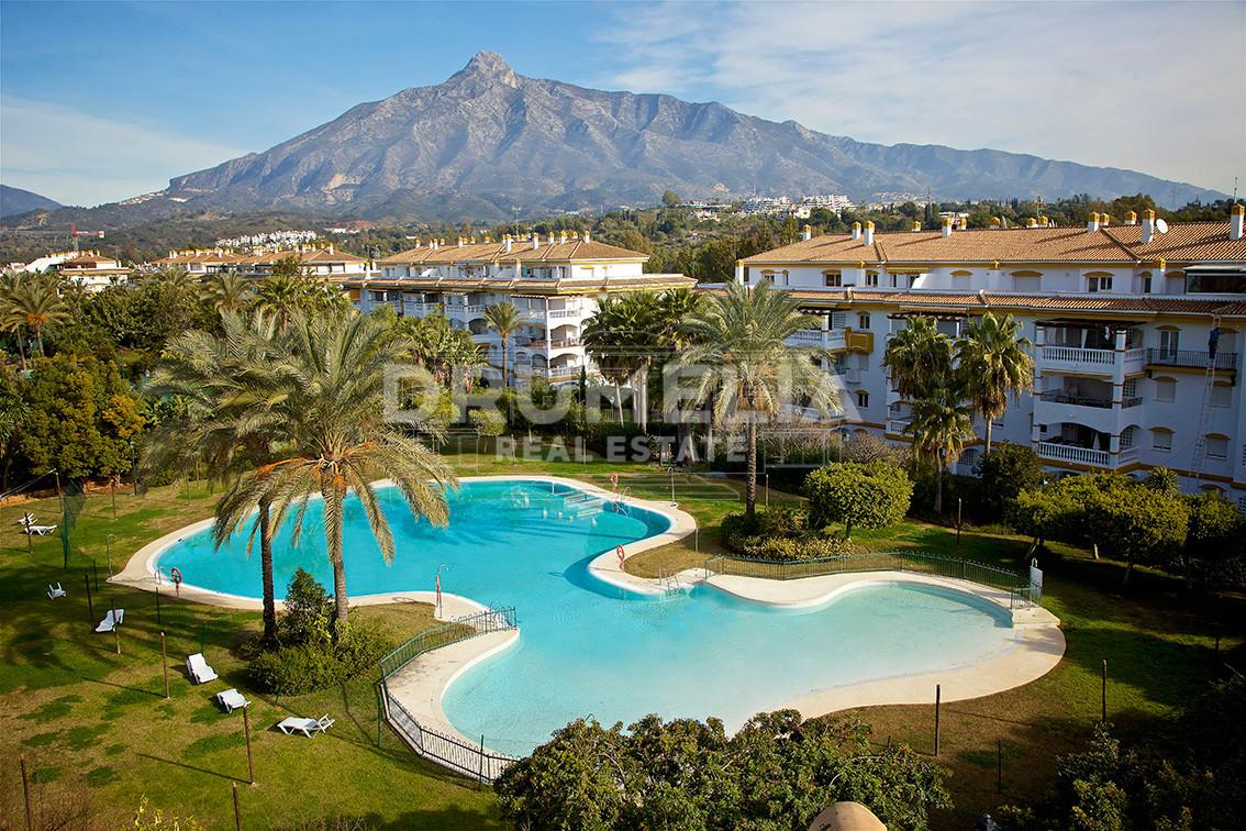 Nueva Andalucia, Fabulous New Apartment, Dama de Noche, Nueva Andalucia, Marbella