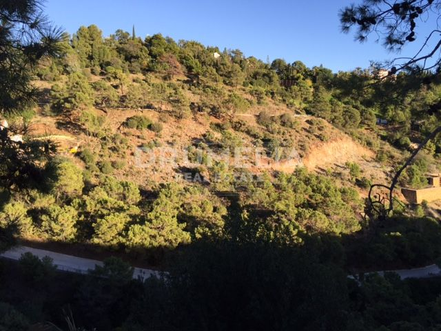 Benahavis, Plot for sale in El Madroñal
