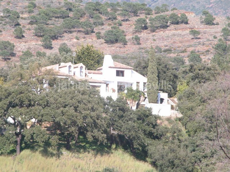 Casares, Fabulous rustic country house.