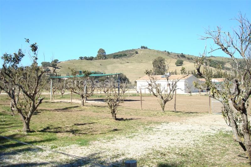 San Martin del Tesorillo, Newly constructed equestrian finca close to Sotogrande with OCA licence