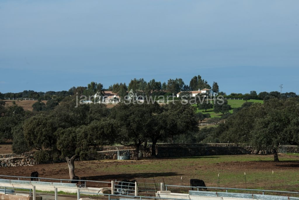 Castilblanco de los Arroyos, Magnificent 1000h farming and cattle breeding estate - ideal as hunting lodge