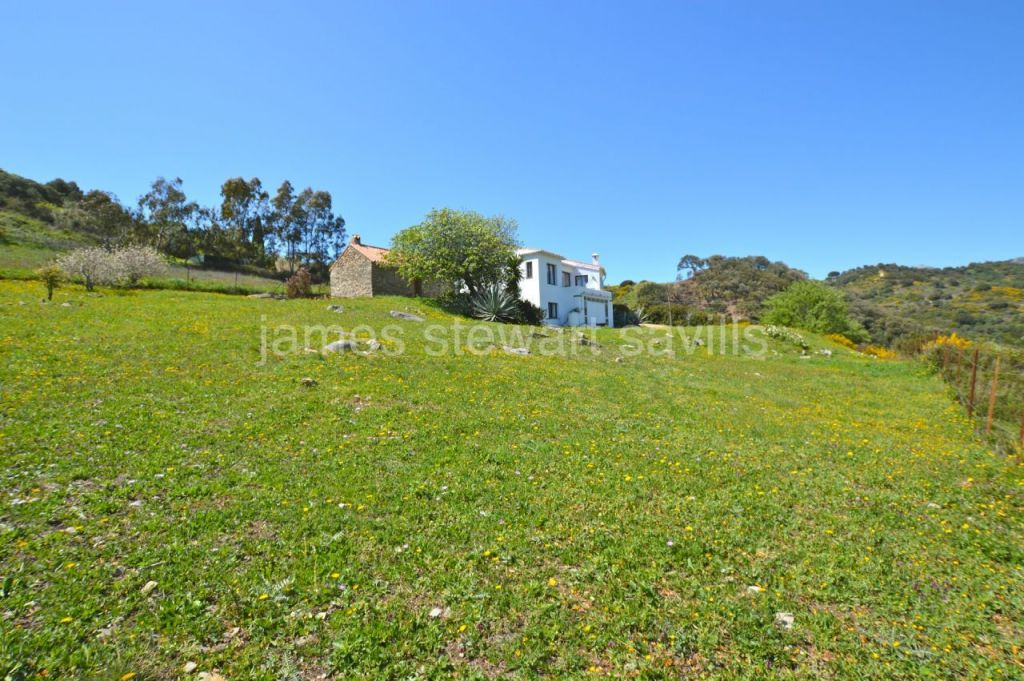 Casares, Small finca situated about midway between Casares and the coast with privacy and wonderful views.