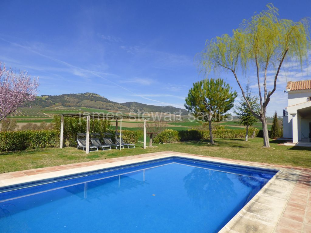 Arriate, Refurbished modern style villa close to Ronda with orchard and olive trees