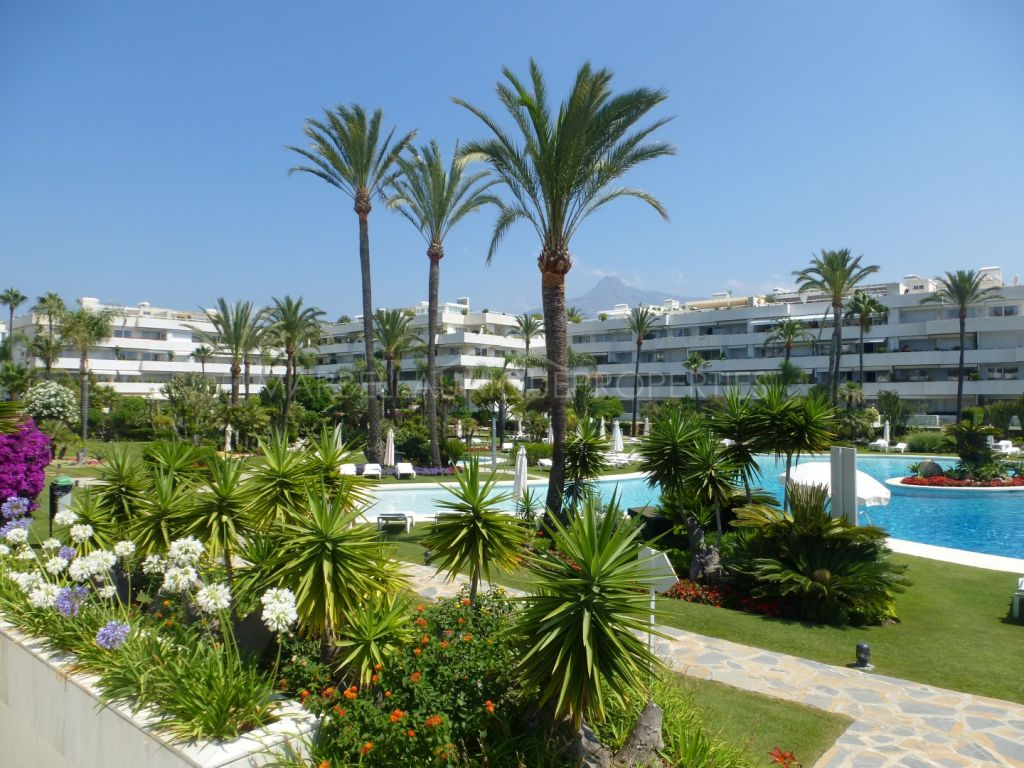 Ground Floor Apartment for rent in Marbella - Puerto Banus