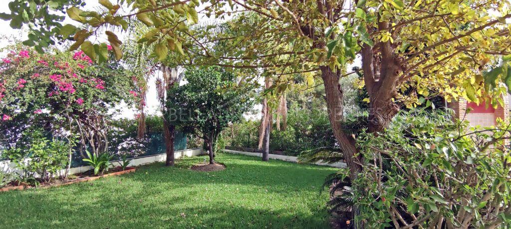 Magical villa in El Paraiso Alto