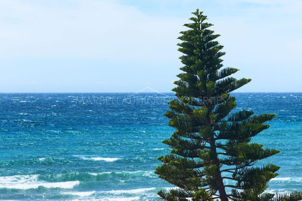 Frontline beach refurbished penthouse in Calahonda Playa