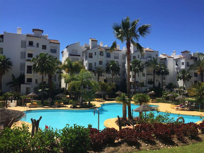 Beachside apartment in Costalita