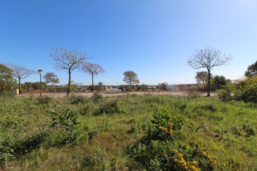 Plot for sale in Almenara Golf, Sotogrande