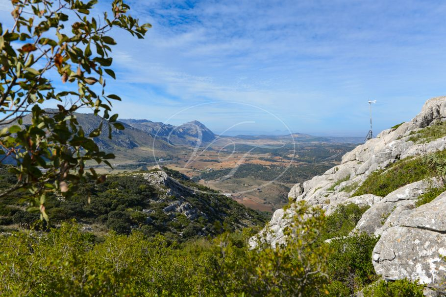 Big game shooting estate with Cortijo, Antequera