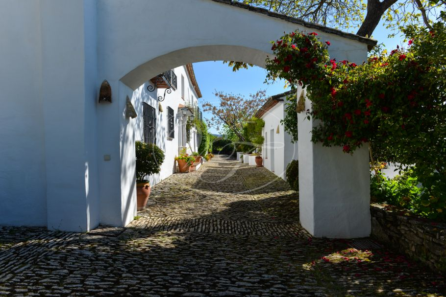 Impressive Authentic Andalusian Cortijo, Ronda