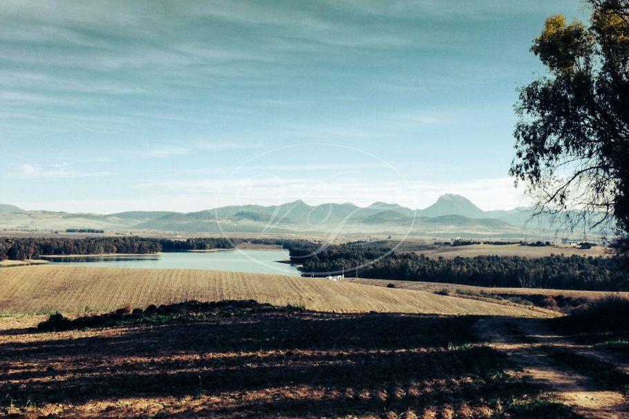 Agriculture Development land, Arcos de la Frontera