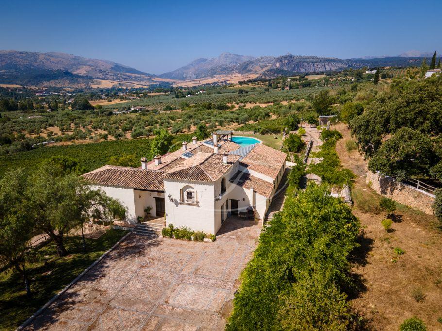 Wijngaard te koop, Malaga