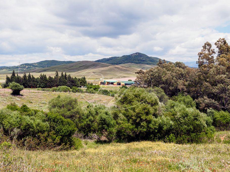 Equestrian country property , Alcala de los Gazules