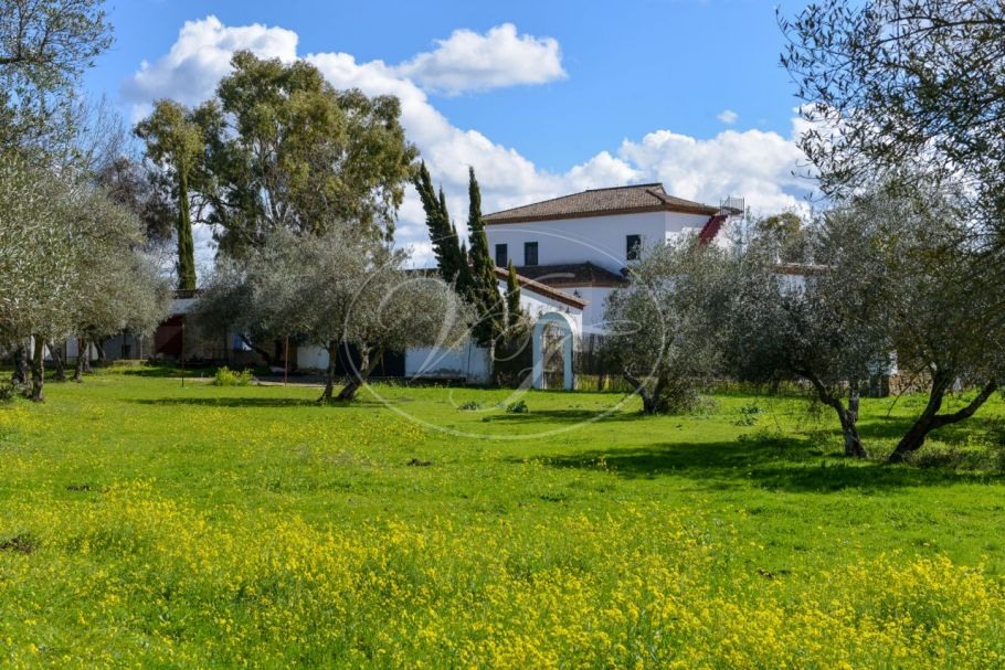 Fabulous cortijo with extensive olivegrove in the Sierra Norte, Seville