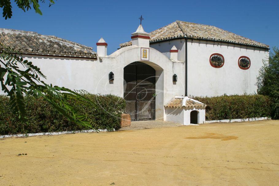 Landhuis, Boerderij, Landgoed, Cortijo Sevilla met sinaasappel plantage., Sevilla